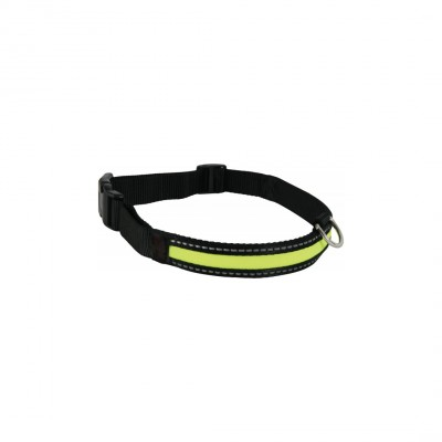 Collier lumineux chien USB